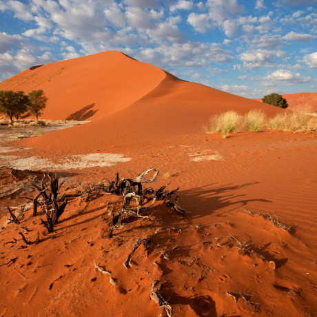 Kanaan Desert